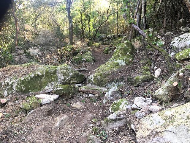 Le nouveau sentier du Pisciaronu