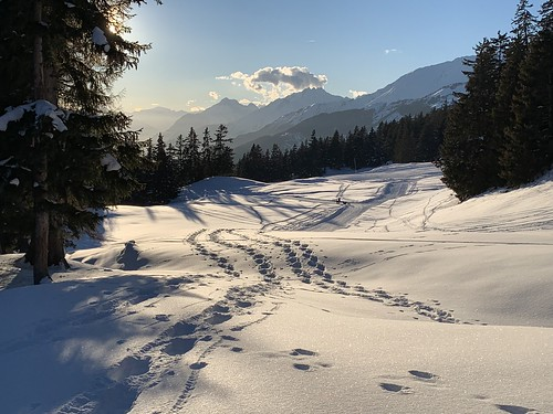 On the trail from Cry d'Er to Crans-Montana (VS)