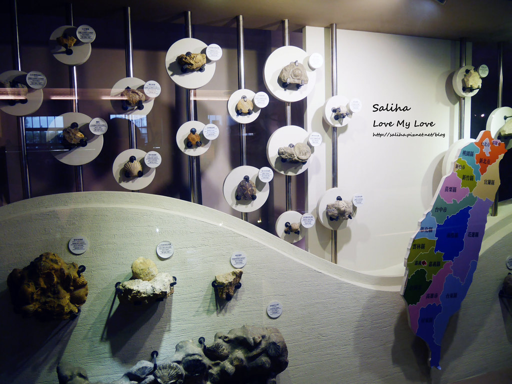 台北車站附近好玩親子景點恐龍博物館門票台博館土銀展示館 (7)
