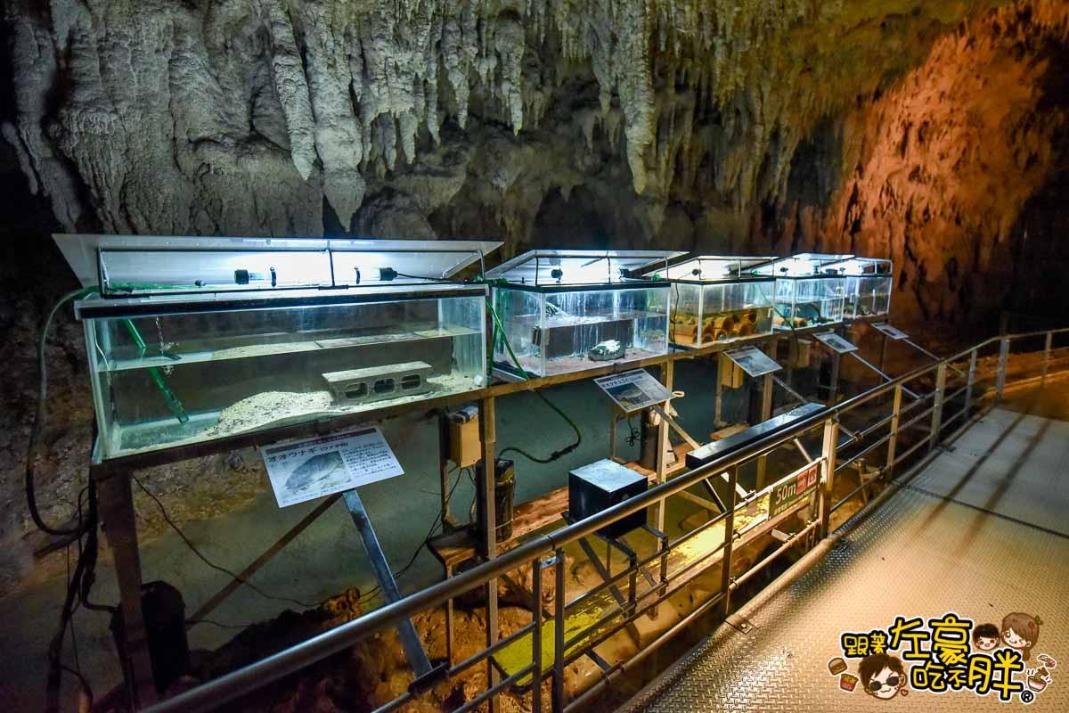 沖繩世界王國村玉泉洞-47