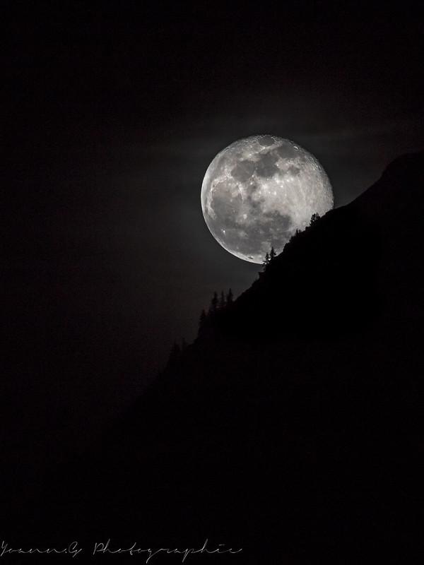 La lune sous toutes ses formes!! 31909699447_a5180b59d1_c