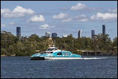 City Cat on Brisbane River passing by-1=
