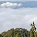 Tenerife-7943.jpg