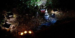 Nighttime in the rock garden