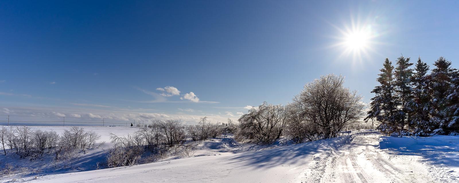 Ah ! Comme la neige a neigé... 39930173273_8dd1e03bd2_h