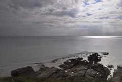 Morbihan – Bretagne -  (Secteur Le Mont) 6