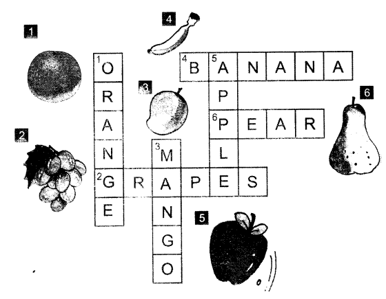 NCERT Solutions for Class 1 English Chapter 11 If I Were an Apple 6