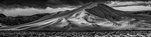 Black and White Dune Panorama