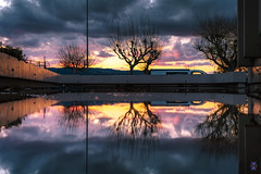 Symmetrical reflection - Valence
