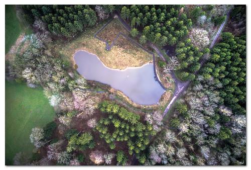 L'étang de Bioley-Orjulaz