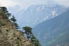 Kinnaur valley #india #kinnaur #himachalpradesh #india #t3mujinpack