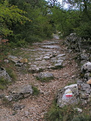 20080913 36568 1014 Jakobus Wald Weg steil Steinmauer - Photo of Livernon
