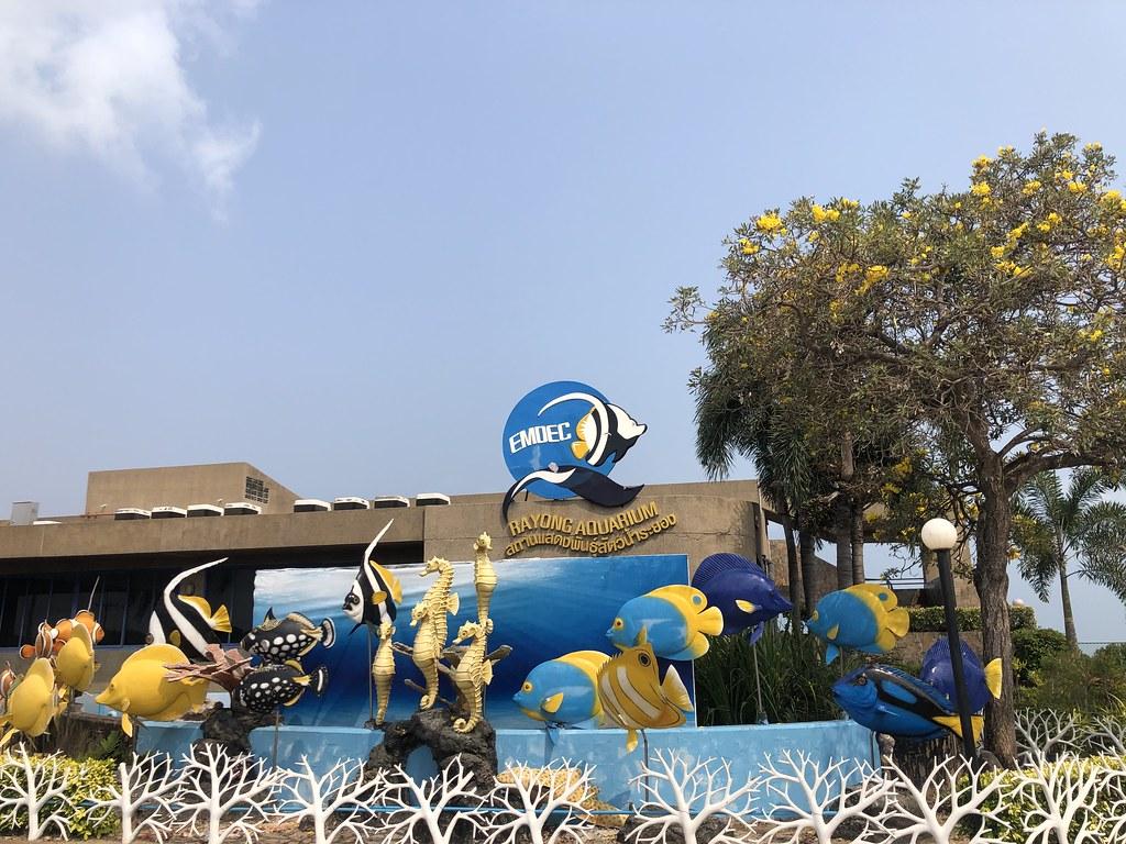 2019春节泰国曼谷 - 尖竹汶 - 罗勇及沙美岛自驾游 泰国旅游 第92张
