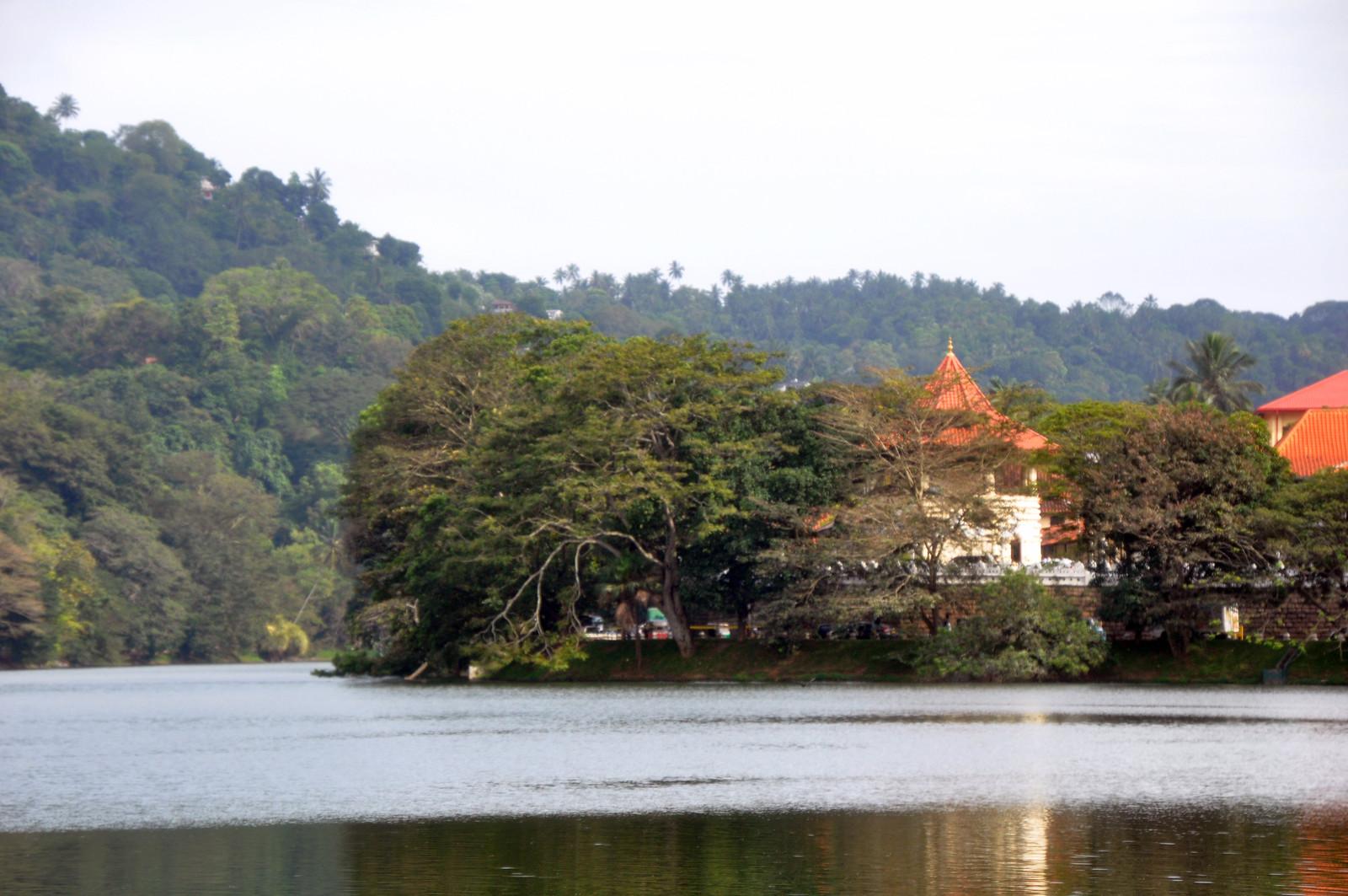 Kandy en un día, Sri Lanka kandy en un día - 32123791797 520387645f h - Kandy en un día, Sri Lanka