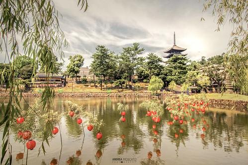 Sarusawa Pond - Nara (Japan)