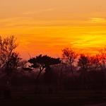 Sonnenuntergang im Norden der Insel Fehmarn - Baltic Sea - 14. Februar 2019 - Fehmarn - Schleswig-Holstein - Deutschland