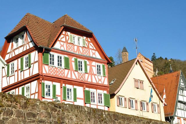 Februar 2019 ... Hirschhorn im hessischen Odenwald ... Perle des Neckartals ... Burg Hirschhorn ... Ersteiner Kapelle ... Foto: Brigitte Stolle
