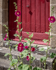 Doorway - Photo of Saint-Gilles