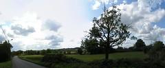 20080912 36028 1013 Jakobus Weite Wolken Bäume Wiese_P01 - Photo of Cuzac