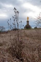 Le Sacré Coeur (Wolxheim,France)-108 - Photo of Kuttolsheim