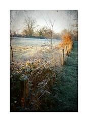 Paysage hivernal...