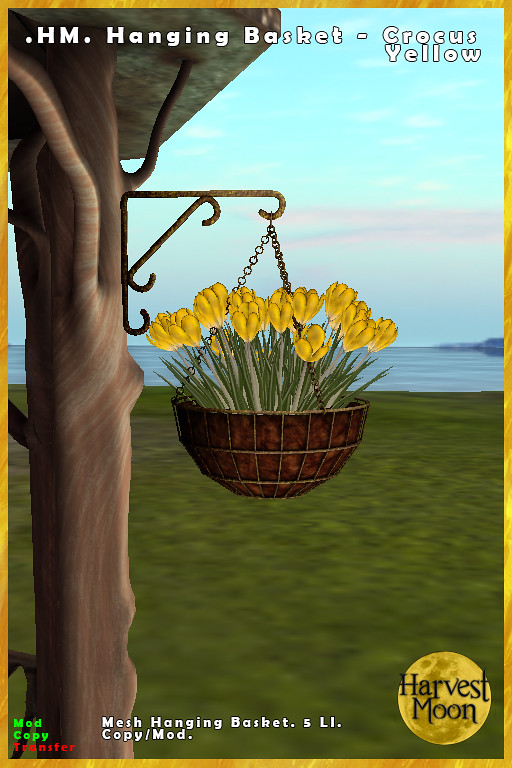 Harvest Moon - Hanging Basket - Crocus Yellow - TeleportHub.com Live!