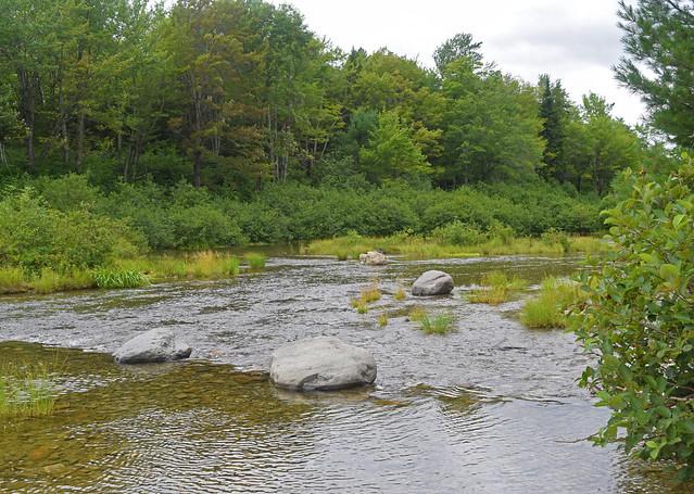 South Branch Pond