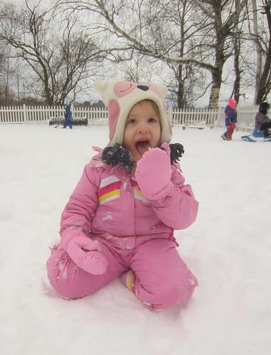tasty snow