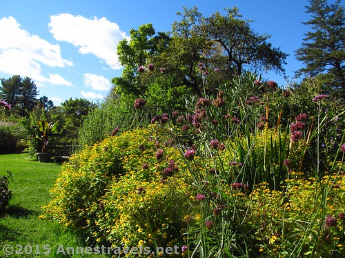 Cottage Garden in Fall