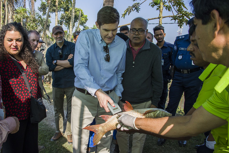 US Ambassador visits Carp Genetic Improvement Program in Bangladesh. Photo by AWM Anisuzzaman/WorldFish.