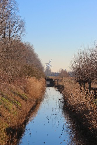 Canal and windmills