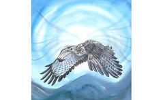 Cherokee Creation Myth 2