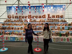 Gingerbread Lane, Hall of Science NYC