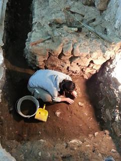 Lo scavo del 2014