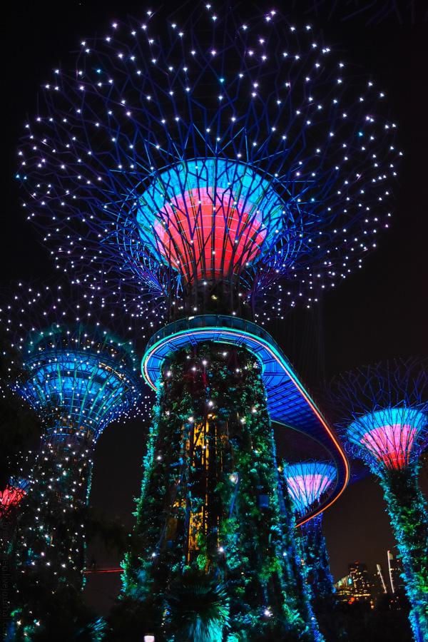 Singapore-details-(48)