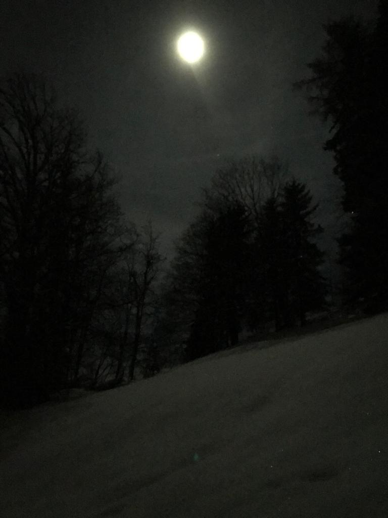 18.01.2019 Winterplausch