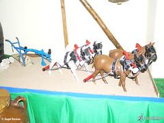 museo-felipe-caro-tomelloso-arado-vertedera