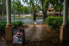 Port Douglas in the rain