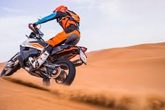 KTM 790 Adventure R 2019 - 17