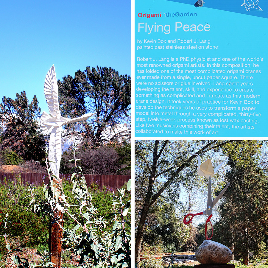 Rancho-Santa-Ana-Botanical-Gardens-Walk-6