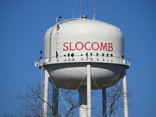 Water Tank (North) Slocomb AL