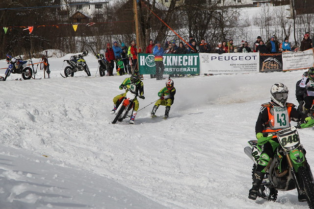 2016 02 13 skijöring gosau 07