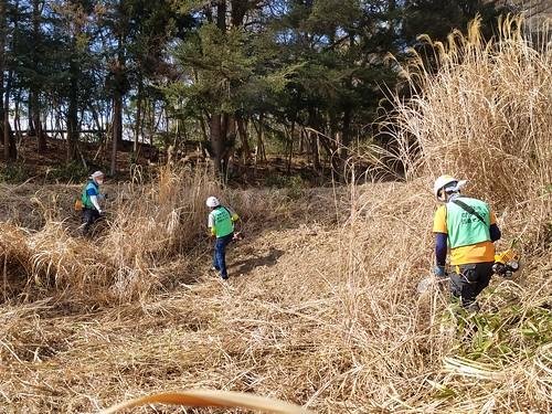 南相馬市小高区で草刈りボランティア(援人 2019年 0216便)