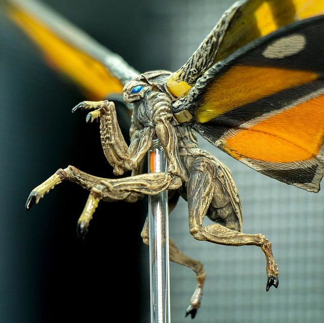 全新造型登場! NECA《哥吉拉II:怪獸之王》摩斯拉 (2019) Mothra (2019)  7 吋可動作品