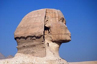 Sphinx Head