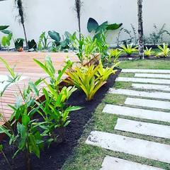 Implantação Jardim