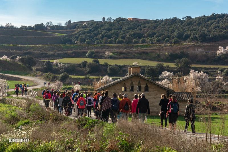 18a. Caminada Popular de l'Urgell, 3 de març de 2019