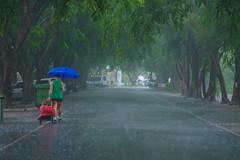 Port Douglas in the wet season