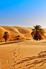 Descente (Adra, Mauritanie)