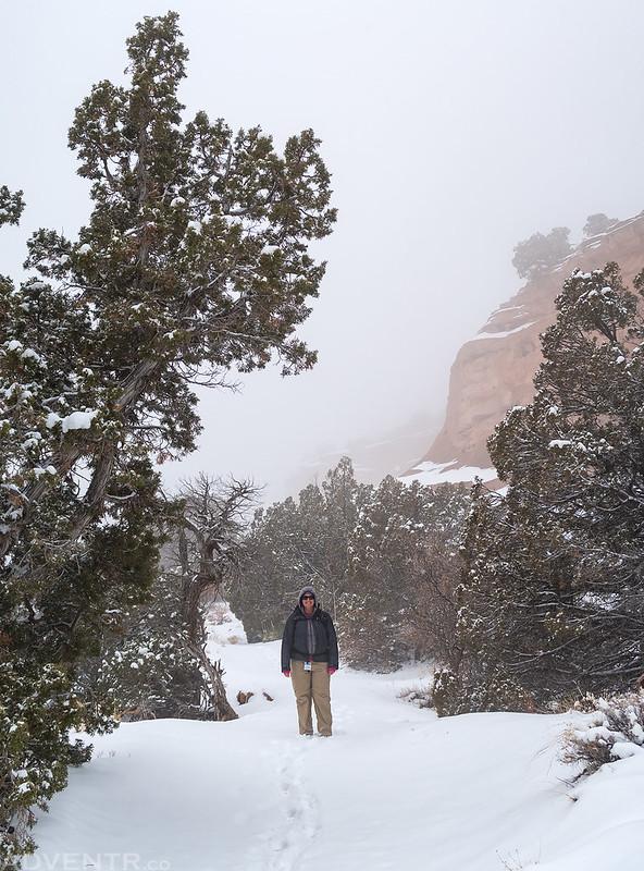 Alcove Nature Trail